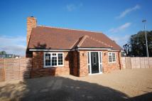 Saffron Detached house to rent