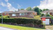 Detached Bungalow for sale in Plymouth Avenue, Brighton