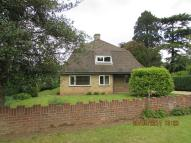 Detached Bungalow to rent in Huntingdon Road...