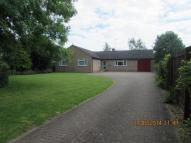 3 bed Detached Bungalow in Tinkers Lane, Sawtry...