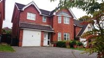 4 bed Detached house to rent in Clement Drive, Crewe