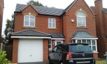 1 bedroom Detached property to rent in Salisbury Close, Crewe