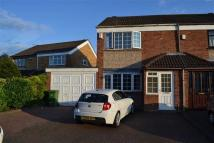 Thompson Close semi detached property to rent