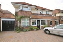 Studio flat to rent in The Gallop, Sutton...