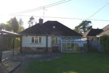Detached Bungalow in Verwood