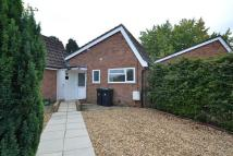 Bungalow to rent in Ferndown