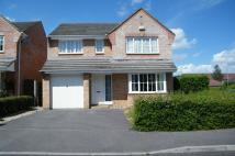 Detached property to rent in Verwood