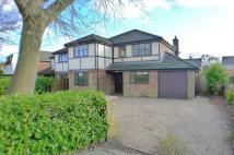 5 bedroom Detached property to rent in Ferndown