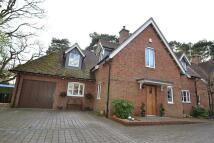 4 bedroom Detached property to rent in Ferndown