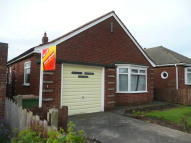2 bed Detached Bungalow to rent in Goodwood Road, Redcar...