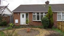 2 bed Bungalow to rent in Harewood Way, Ings Farm...