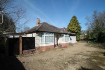 Detached Bungalow for sale in Radley, Oxfordshire