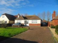 Detached Bungalow for sale in Harley Shute Road...