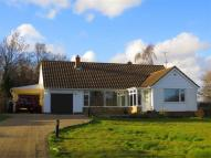 4 bed Detached Bungalow in Westfield Lane...