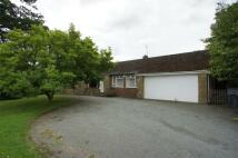 Hartle Lane Detached Bungalow to rent