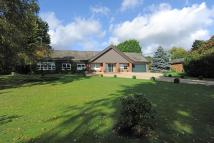 Detached Bungalow in Dukes Park, Woodbridge