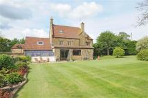 Detached property for sale in Chilthorne Domer...