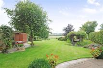 property for sale in Tintinhull, Somerset, BA22