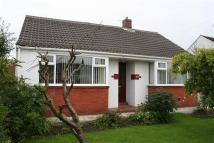 Bungalow to rent in CHORLEY LANE...