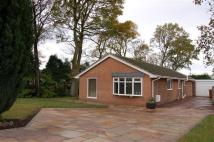 3 bed Bungalow for sale in FOWLER CLOSE, HOGHTON