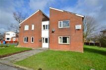 Apartment to rent in Carrington Road...