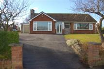 Bungalow for sale in WASHINGTON LANE, EUXTON...