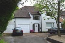 Detached property for sale in WINCHESTER HOUSE...