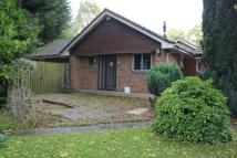 3 bed Detached Bungalow to rent in Capuchin Close