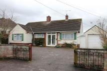 Detached Bungalow in Ottery St Mary, Devon