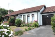 Detached Bungalow in Newton Poppleford...