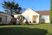 Detached Bungalow in Payhembury, Honiton