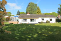 3 bedroom Detached Bungalow in West Hill, Ottery St Mary
