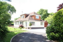 3 bed Detached Bungalow in West Hill, Ottery St Mary