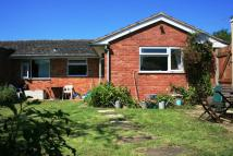 Semi-Detached Bungalow in Feniton