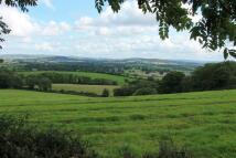 Pinhoe Land
