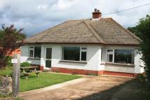 Detached Bungalow for sale in Alfington, Ottery St Mary