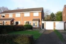 3 bed semi detached property for sale in Ottery St Mary
