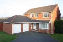 Detached home for sale in Honiton, Devon