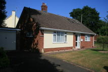 Whimple Detached Bungalow for sale