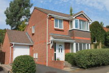 3 bedroom semi detached property for sale in Ottery St Mary