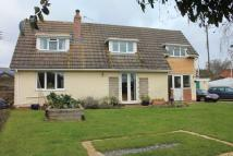 3 bed Detached home in Feniton