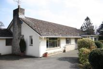 4 bedroom Detached Bungalow in Ottery St Mary