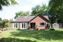 Detached Bungalow for sale in West Hill Road