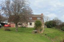 4 bedroom Detached property for sale in Rockbeare