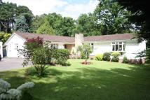 3 bed Detached Bungalow in West Hill