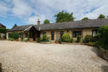 3 bed Detached Bungalow for sale in Nutbourne