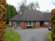 Chalet to rent in West Hill, Ottery St Mary