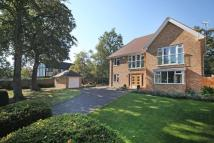 4 bed Detached property to rent in Daleside, Gerrards Cross...