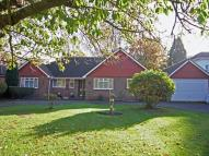 Detached Bungalow for sale in Windsor Road...