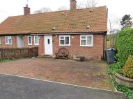 Semi-Detached Bungalow in South Mount...